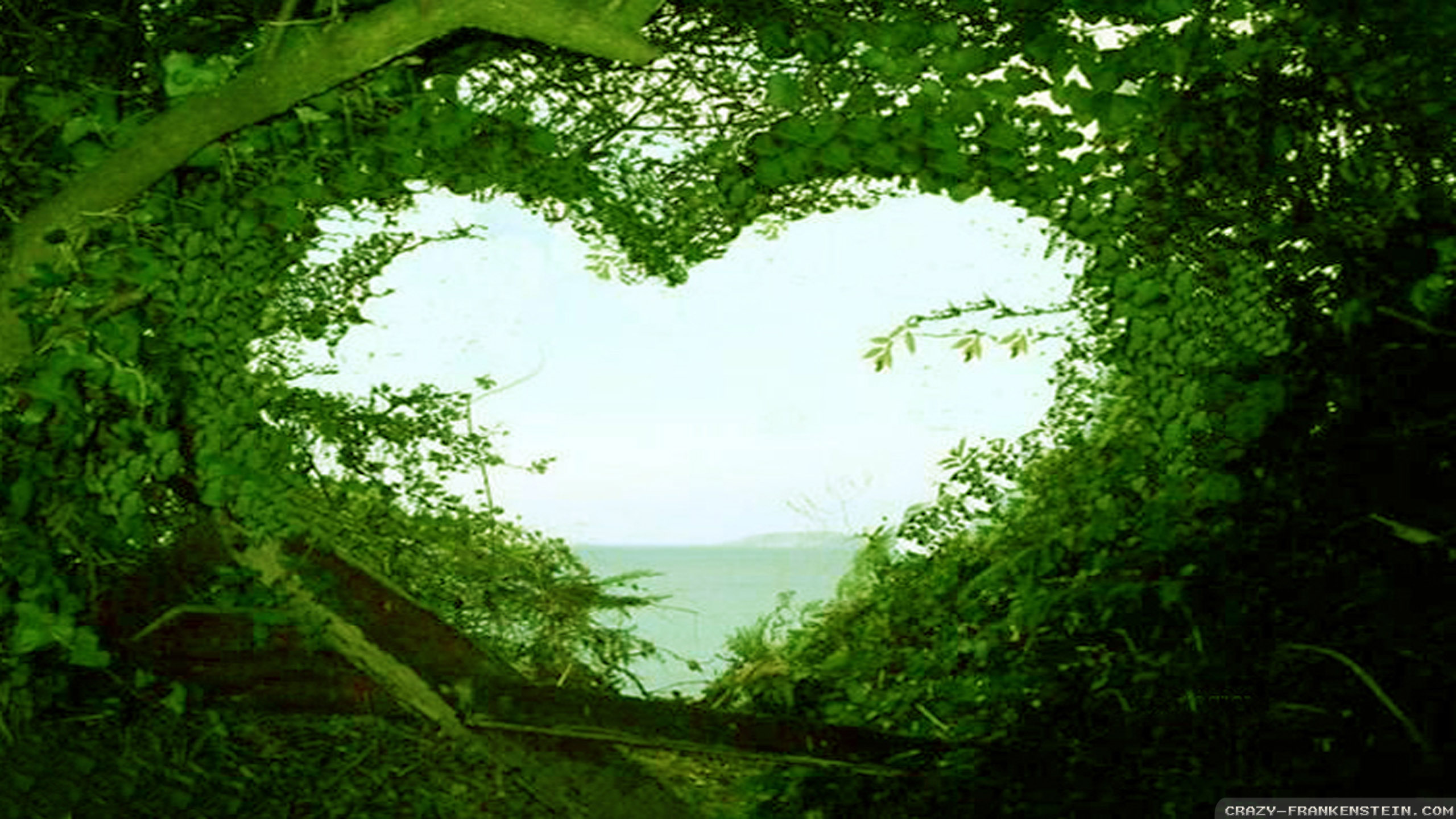Beautiful Love Nature Wallpaper Hd Desktop Wallpapers Love Nature